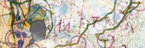 FinnSpring relay