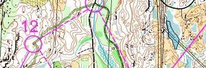 Örebro Open Runners choice